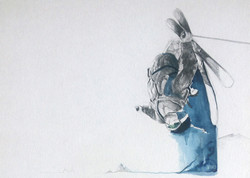 Freestyle skiing drawing sketch