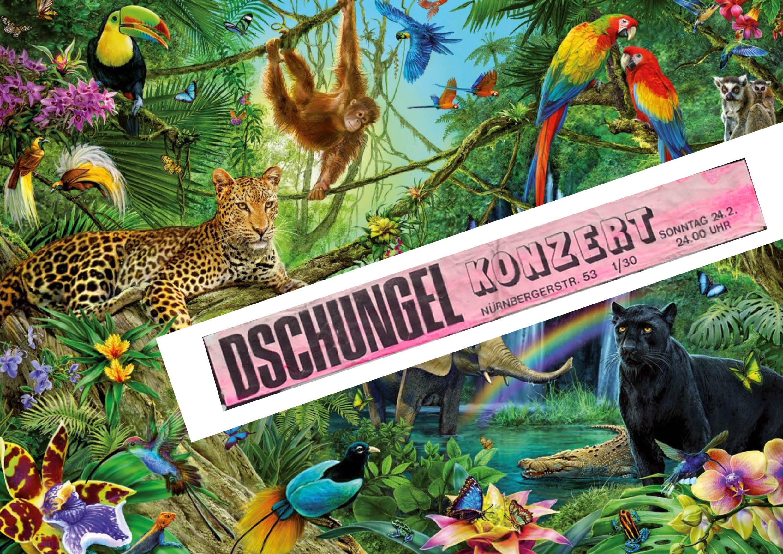 DschungelA3