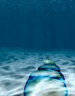 2_underwater.jpg