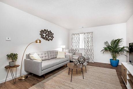 Stadium Apartments Living Room Huntsville, AL