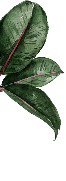 leaf 4 copy.png
