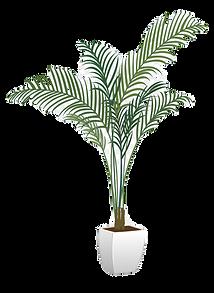 0-5621_transparent-background-pot-plant-