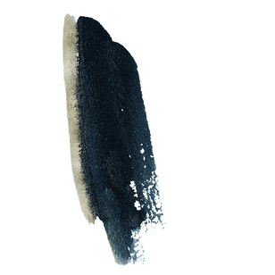 texture 17.png