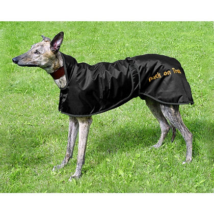 Manteau Greyhound