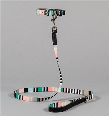 Multi-Striped Collar