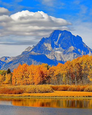 repeater image .87x1 eb oxbow bend_MG_55