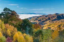Beech Ridge Overlook