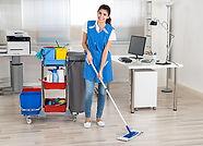 Especialistas en limpieza