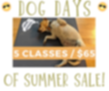 Dog Days of Summer Sale - clean.png