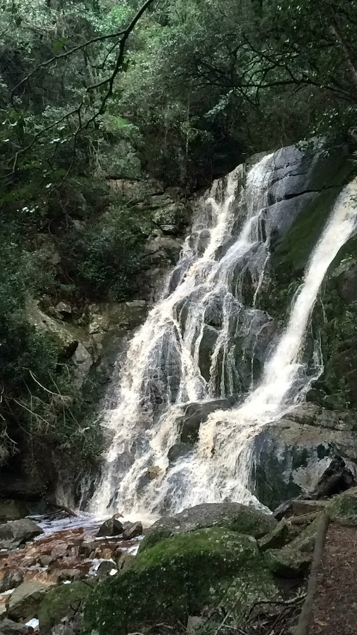 Gushing waterfall near the Skeleton Gorge/Contour Path intersection above Kirstenbosch.