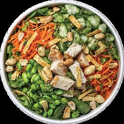 Ninja-Salad.png