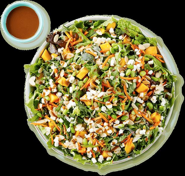 SaladCatering.png