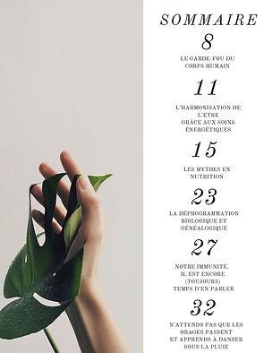 Sommaire Revue Harmoniser Juin 2020.jpg