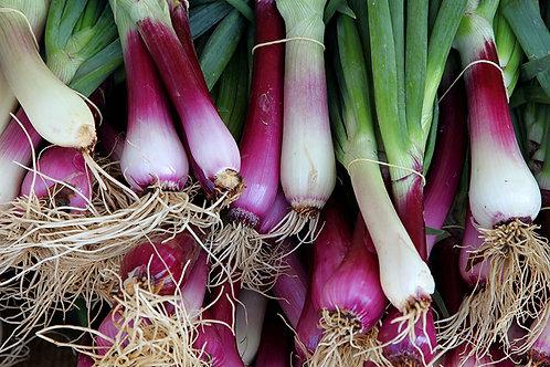 Fresh onions c. 400g