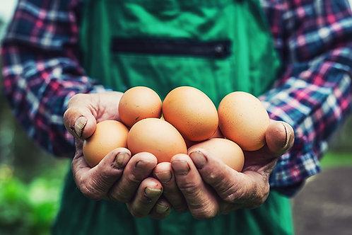 Organic eggs x4