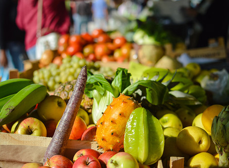 Sustainability and the meaning of organic
