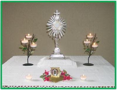 Temps d'adoration eucharistique le 29 juin 2017