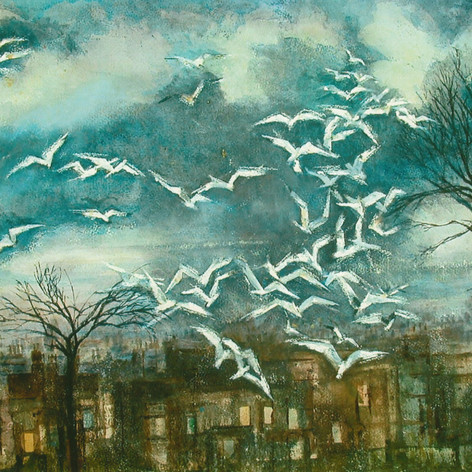 19. Seagulls over South Ealing