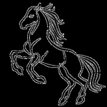 hobunevaatabavaskaule.png