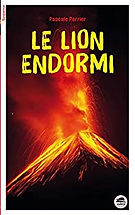 cat 4 le lion endormi.jpg