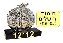 חומות ירושלים עם יונה