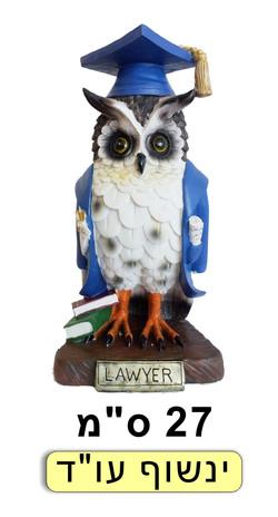 ינשוף עורך דין גלימה כחולה
