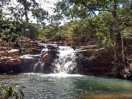 Educação ambiental no DF é discutida em Brasília