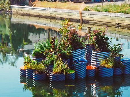 Jardins flutuantes instalados em canal de Nova York