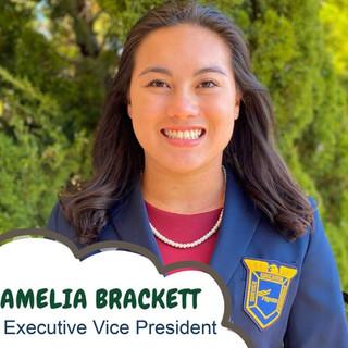 Amelia Brackett