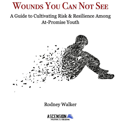 Wounds You Can Not See (eBook Version)