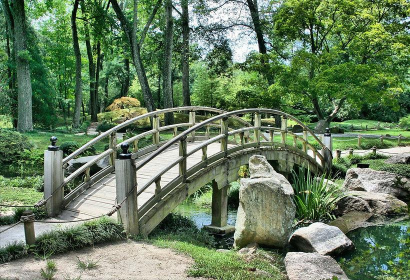 Landscape Site Consultation