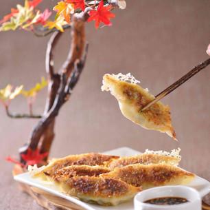 Pan-Fried Dumplings 锅贴