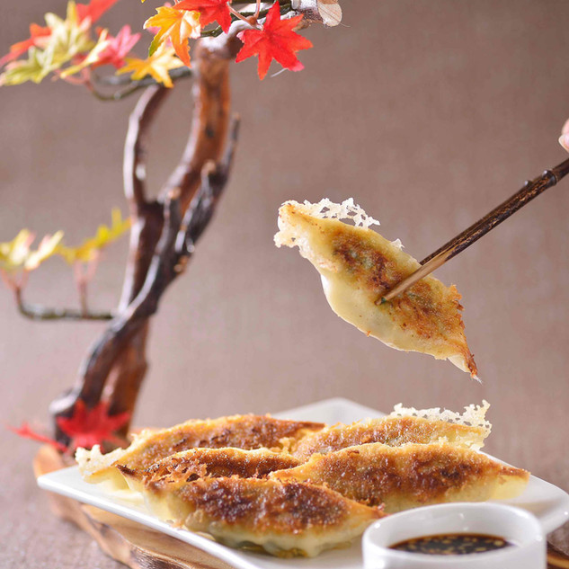 Pan-Fried Dumplings 锅贴