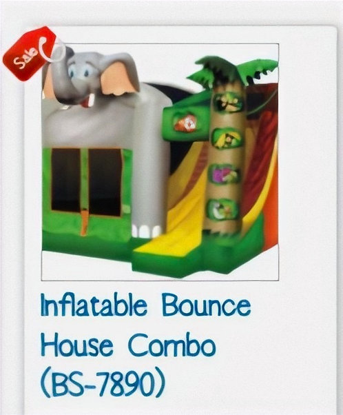 Inflatable Bounce House Combo