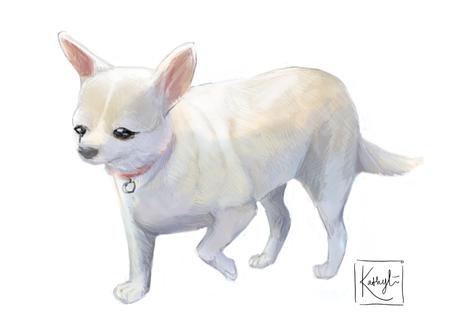 'Dog' Commission
