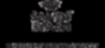 Sands Beach logo.png