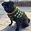 Thumbnail: Pug Badge