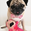 Thumbnail: Peach - The Pug-Jama Bummlie ~ Stuffing Free Dog Toy