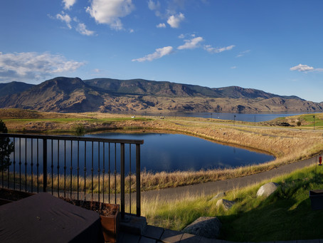 Tobiano — Discovering a Canadian Gem