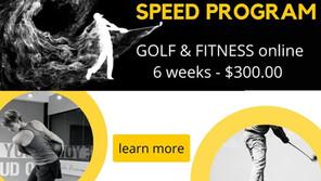 A New Program Dedicated to Increasing Swing Speed