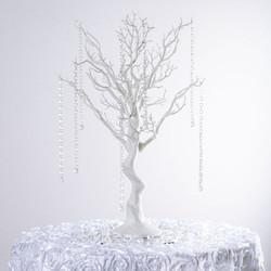 manzanita-tree-600x600