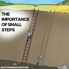 'THE IMPORTANCE OF SMALL STEPS'