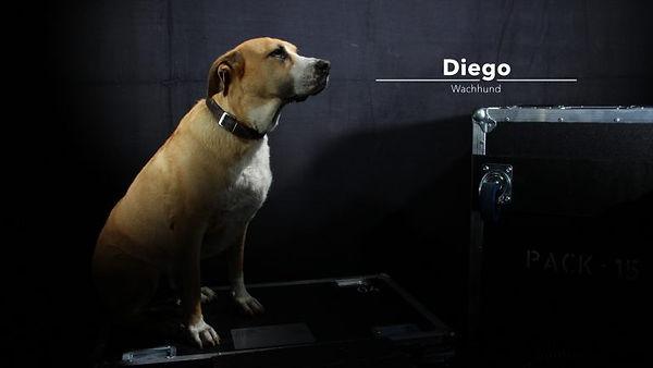 Diego-768x512_edited.jpg