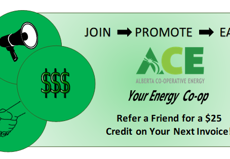 Refer A Friend, Neighbour or Co-worker to ACE