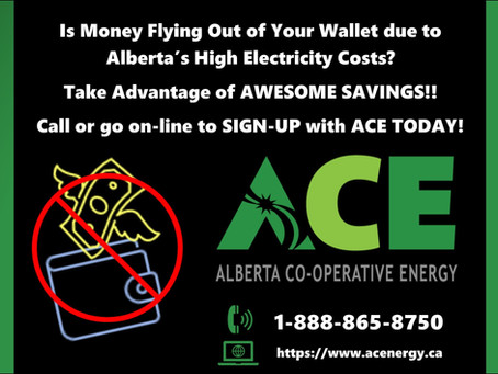 High Alberta Electricity Rates causing you an empty wallet?