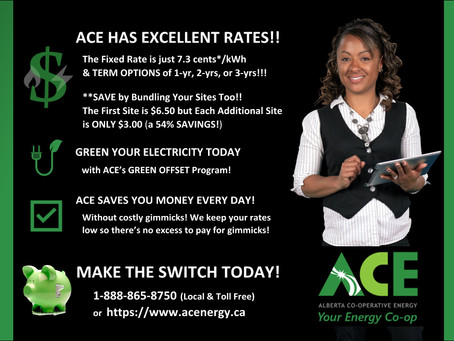 Excellent Rates with Term Options and Bundling To Save You Money!!