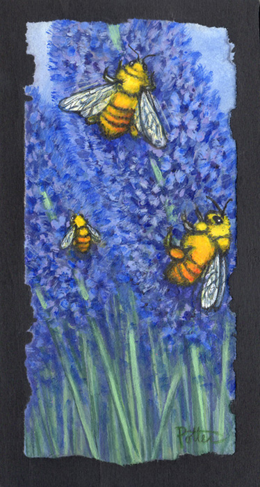 Bees on Lavender