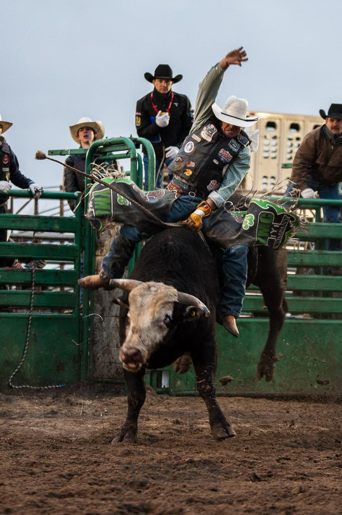 Josh Birks Long Round ride on Skori Bucking Bulls' Katie's Pet