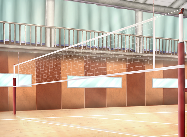 Gym-With-Volleyball-Net-by-CherryCater-o