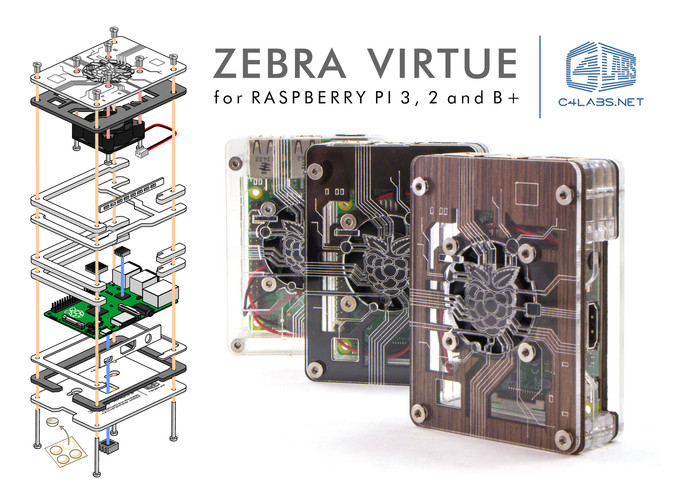 Zebra Virtue